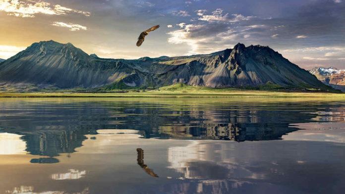 Nowa Zelandia - wycieczki do krainy bujnej natury